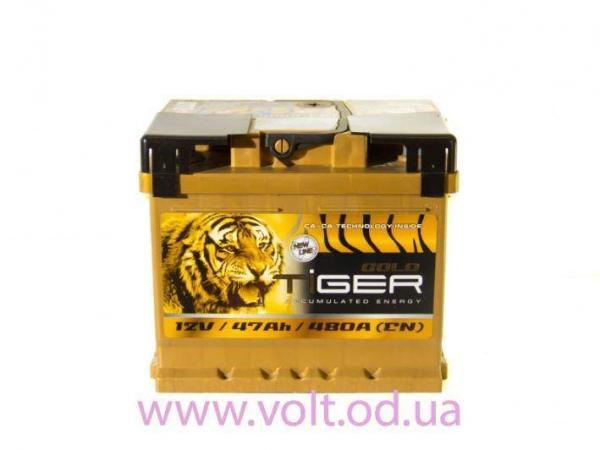TiGER GOLD 47ah R+480A